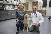 Picture of dog with Purdue Scientists